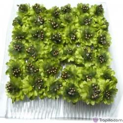 Caja con doce peinetas en tonos verdes