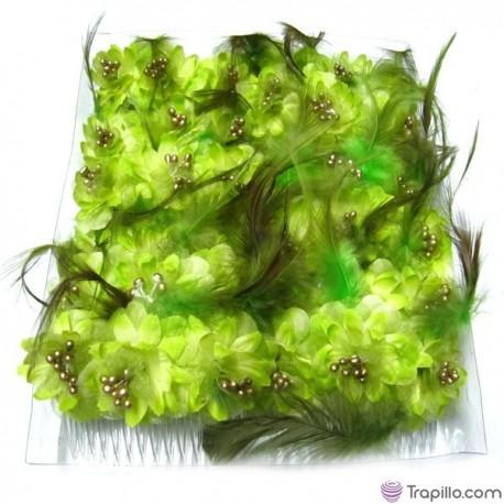 Caja con doce peinetas con flores y plumas color verde