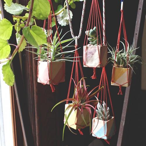 colgadores-plantas