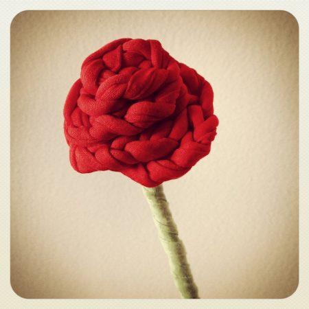 Patrón Rosa de Sant Jordi